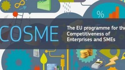 """PROJEKAT LIR: """" Objavljen javni poziv za bh. kompanije u EU COSME trening """""""